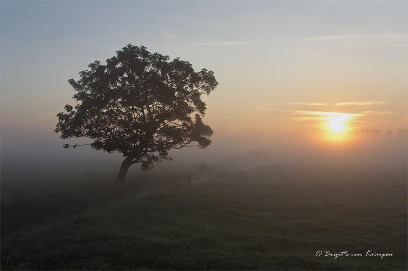 Sunrise at Midden Delftlands