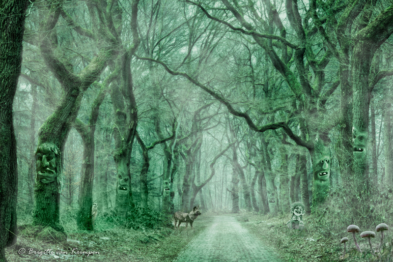 the road to Fairyland