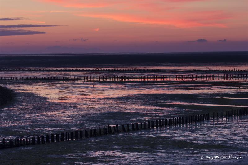 Sunrise at the Waddenzee 5.00 pm