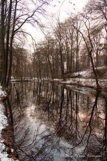 Winter brown